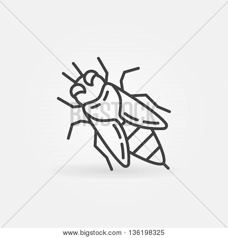 Honey bee linear icon. Vector apis or honeybee thin line sign. Outline bee concept symbol or logo element