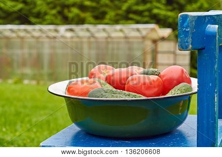 Bowl of fresh vegetables on the chair in front of rural hothouse