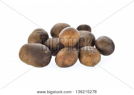 whole Barometer mushroom on a white background
