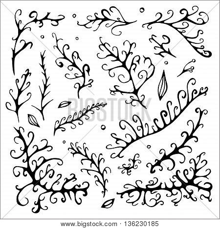stock vector abstract leaf elements set. summer design elements for template
