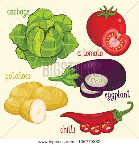 Set of vegetables mix. Vector cabbage, tomato, potatoes and other vegetables. Natural organic. Ingredients for vegetables salad. Isolated cabbage, tomato, potatoes and other vegetables.