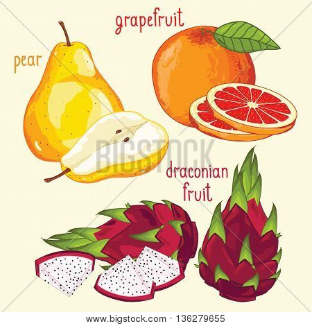 Set of fruit mix vector isolated. Dragon fruit, pear, grapefruit fruits. Natural organic food. Ingredients for fruits salad. Sweet and ripe summer fruits. Isolated dragon fruit, grapefruit, pear. Half of pear, grapefruit, dragon fruit