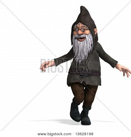 cute and funny cartoon garden gnome