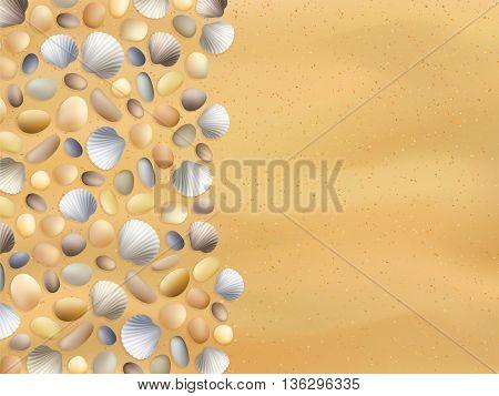 Stones Shells Sand Background