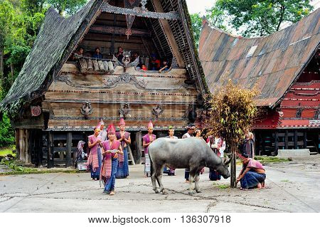SUMATRA, INDONESIA - 22 MAY 2015 : Traditional Batak dancers performing a ceremonial dance in Bolon Simanindo Batak Museum Village in 22 May 2015