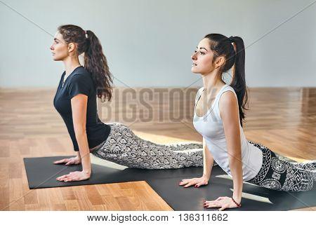 Two Young Women Doing Yoga Asana Cobra Pose