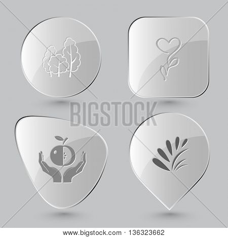 4 images: trees, flower, apple in hands, plant. Nature set. Glass buttons on gray background. Vector icons.
