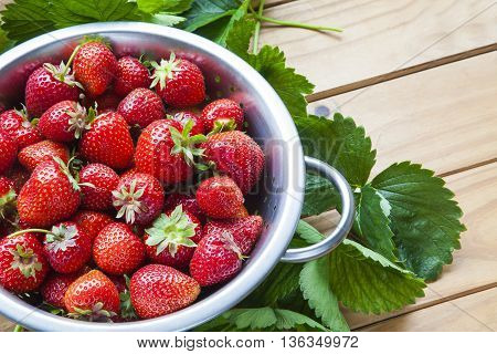 Strawberries in colander - freshly picked raw and ripe on background of wood and strawberry leaves - with plenty of text / copy space.
