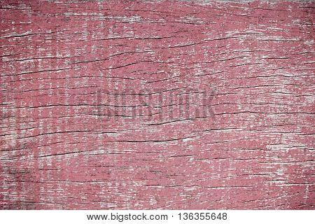 natural wood background closeup,  timber, tree, wood