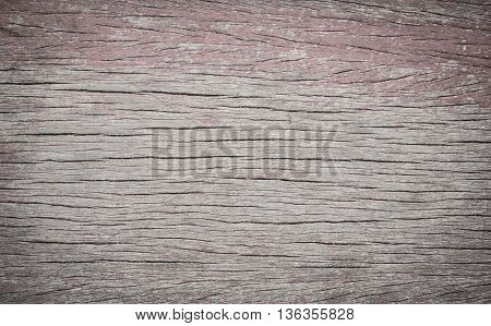 natural wood background closeup.  timber, tree, wood