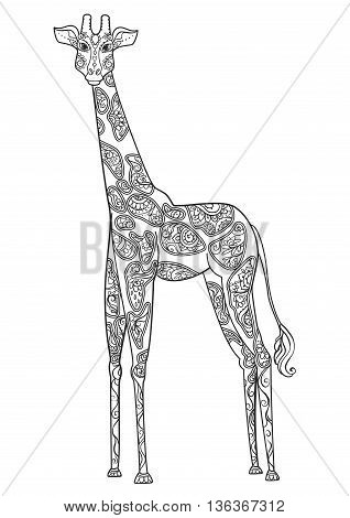 Ornament giraffe vector. Beautiful illustration giraffe for design, print clothing, stickers, tattoos, Adult Coloring book with giraffe. Hand drawn animal illustration. giraffe lace ornamental