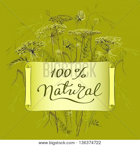 Hand-draw label template with wild flowers and herbs. Hundred percent natural lettering card. Design for herbal cosmetics, natural and organic product store, package. Vector illustration stock vector.