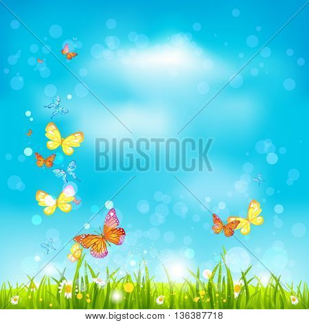 Summer sky background. Bright summer blank with flowers and butterflies. Nature template for design banner,ticket, leaflet, card, poster and so on.