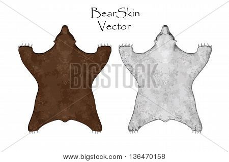 Bear pelt. Big brown and White Bear. Hunting trophy. Vector illustration Top View 1