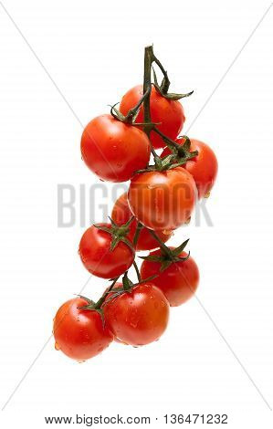 ripe cherry tomatoes isolated on white background. vertical photo.