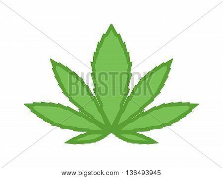 Cannabis marijuana leave eco design elements Leaf icon vector illustration friendly nature elegance symbol. Decoration marijuana leaf icon. Cannabis marijuana symbol green organic leave