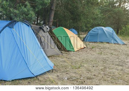 Camping and tent under the pine forest, Tourist camping.
