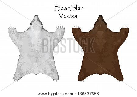 Bear pelt. Big brown and white bear . Hunting trophy. Vector illustration. Interior Design Set