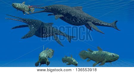 Triassic Shonisaurus Marine Reptile 3D Illustration - A Coelacanth fish becomes prey for a Shonisaurus Ichthyosaur marine reptile during the Triassic Period.