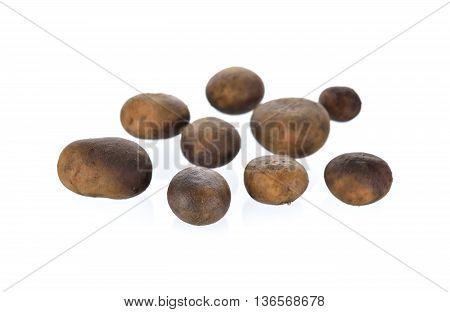 whole Barometer mushroom on a white background