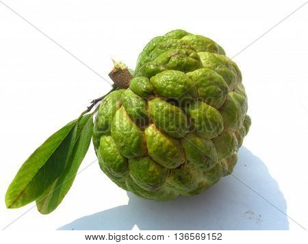 Annona squamosa (also called sugar-pineapple or sweetsop) or custard-pineapple