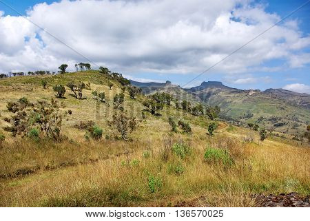 Landscape in Mount Elgon National Park Kenya
