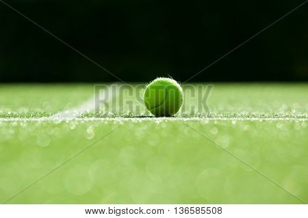 Selective Focus. Tennis Ball On Tennis Grass Court Good For Backgroundzz