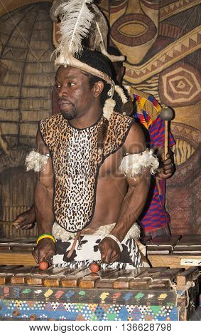 Gauteng,  South Africa - July 04,  2015. An unidentified African Bantu nation man Zulu with ethnic accessories and clothes playing the traditional instrument xylophone in Lesedi Cultural Village (unique center of African culture). Ethnic music.