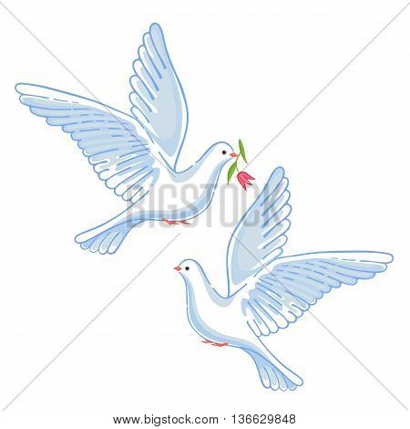 Soaring dove with flower vector illustration isolated on background