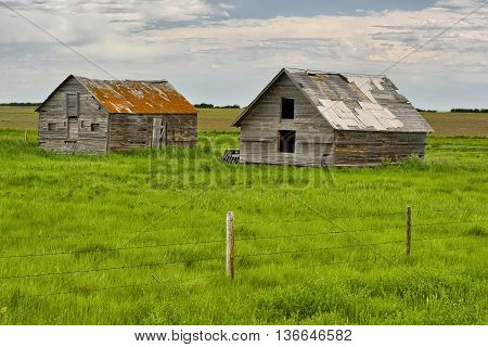 Abandoned homes on the prairie in Dorothy, Alberta, Canada