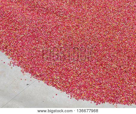 Red Quinoa closeup on sunlight in Taiwan