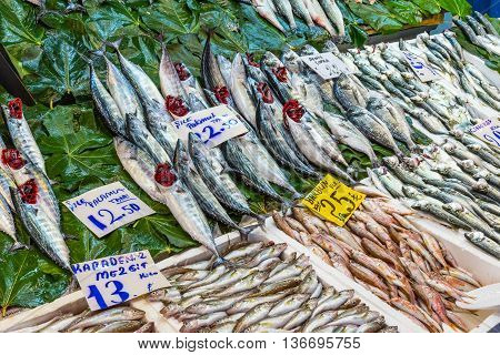 Fish market with a great offer in Istanbul, Turkey