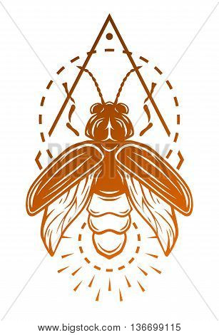 Firefly and geometric elements Symbol insect. Vector illustration.