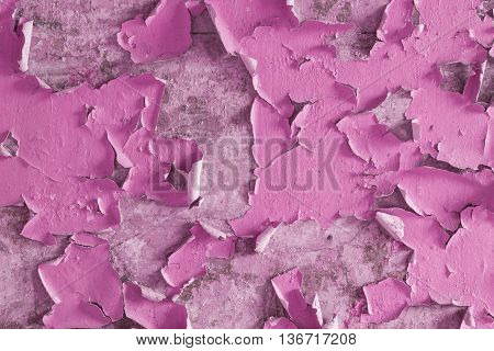 Cracked and Peeling Pink Paint Wall Texture