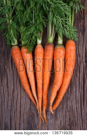 Bunch Of Fresh Carrots With Green Leaves