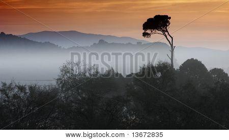 Morning Landscape In Greece