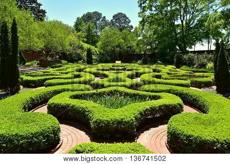 New Bern North Carolina - April 24 2016: Clipped Boxwood hedges line brick pathways in the Maude Moore Latham Memorial Knot Garden at 1770 Tryon Palace