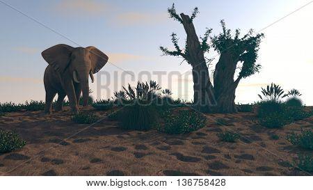 3d illustration of the elephant walking near baobab tree