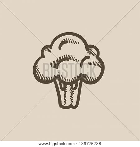 Broccoli vector sketch icon isolated on background. Hand drawn Broccoli icon. Broccoli sketch icon for infographic, website or app.