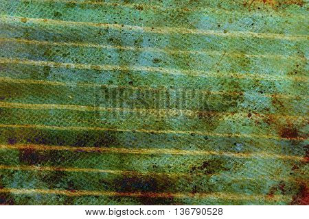 detail of wooden horizontal batten cover on house, painting.