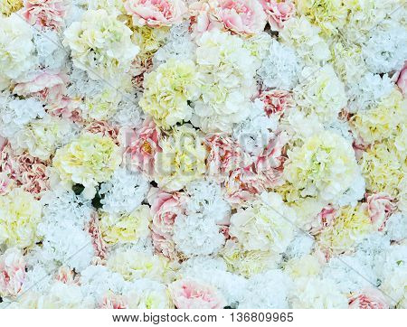flowers background for wedding scene , background with   flowers for celebrating a special occasion