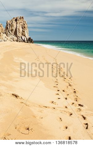 Footsteps in Cabo San Lucas tropical beach, Mexico