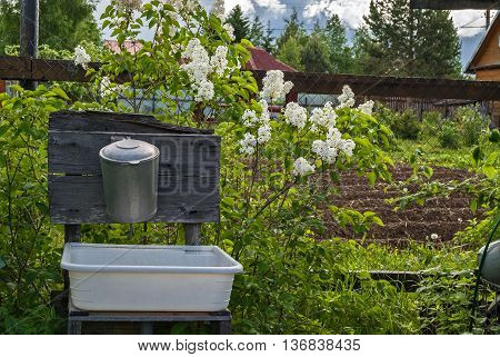 Old aluminum washbasin at their summer cottage against the backdrop of blooming lilacs.