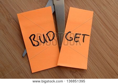 budget cut in half with scissors to represent budget cuts