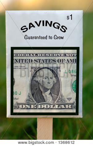 Savings Seed Packet