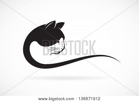 Vector image of an cat face design on white background Vector cat head for your design