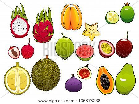 Freshly plucked bright yellow star fruit and pink litchi, soft and ripe passion fruit and feijoa, fig and papaya, juicy guava, dragon fruit and sweet durian fruits supplemented slices, showing seeds and flesh