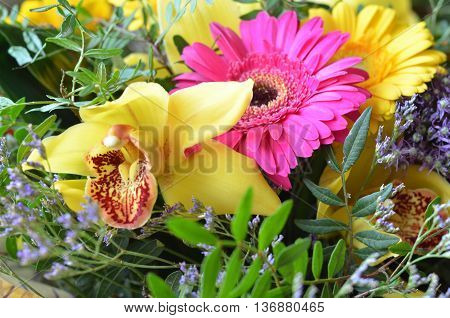 Flower background with colorful summer flowers in rainbow colors, orchids and gerbera for celebrating a special occasion