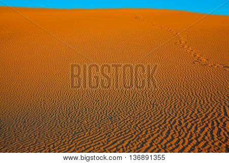 Early morning  in a picturesque part of Death Valley, USA. The small waves of orange sand. Mesquite Flat Sand Dunes