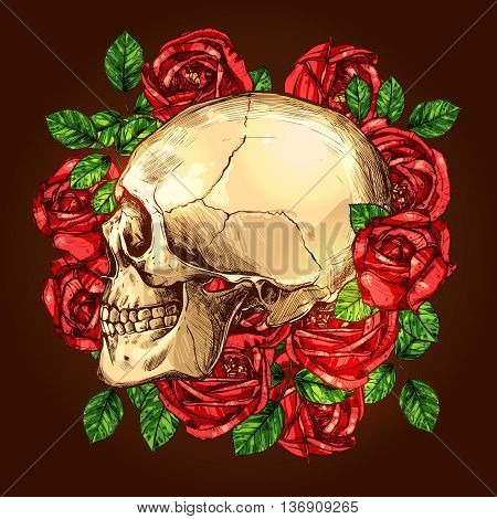 Skull In Profile With Flowers. Skull And Roses Hand Drawn Vintage Illustration
